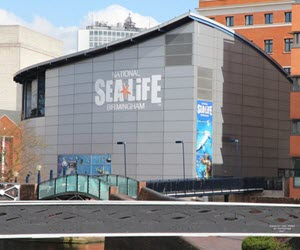 Sealife in Birmingham