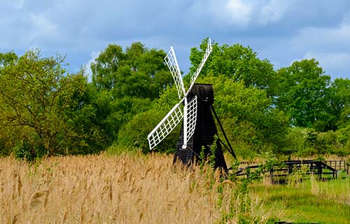 Wicken Fen Nature Reserve