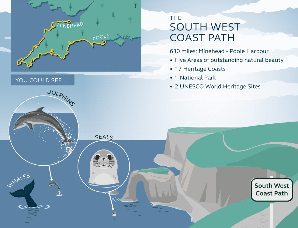 Illustration and information about the south west coast path